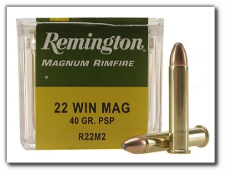 Remington-22-Win
